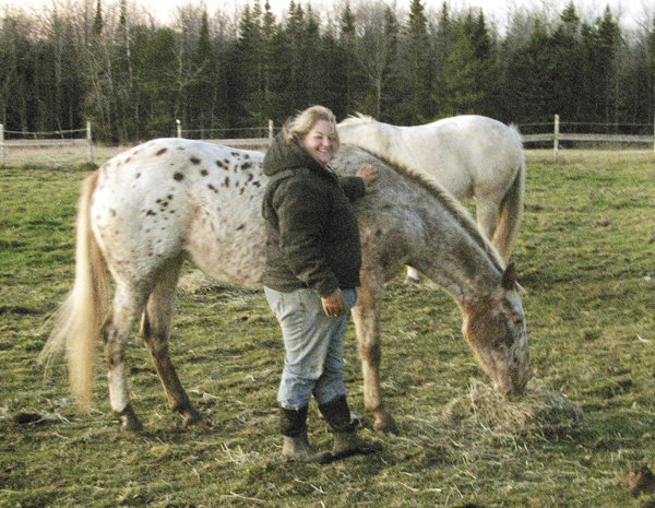 Jen Winchester of Spirit of Hope Farm Equine Shelter and Rescue in Winterport feeds the horses in Nov. 2010. Part of Winchester's work is to find good homes to adopt the rehabilitated rescue horses.