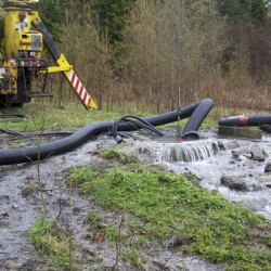 More than a million gallons of sewage discharged into Limestone stream