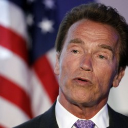 Schwarzenegger puts acting career on hold