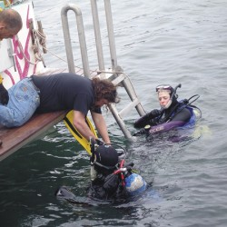 'Superheroes' dive to clean Bar Harbor