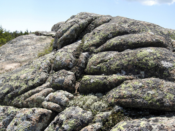 Folded granite like this rock ledge on Pemetic Mountain in Acadia National Park is evidence that the granite was once molten hundreds of millions of years ago.