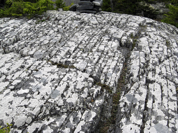 The scars in the bedrock on Pleasant Pond Mountain in Caratunk on the Appalachian Trail indicate that the continental glacier that covered Maine in ice 10,000 years ago dragged smaller rocks across the mountain's surface.