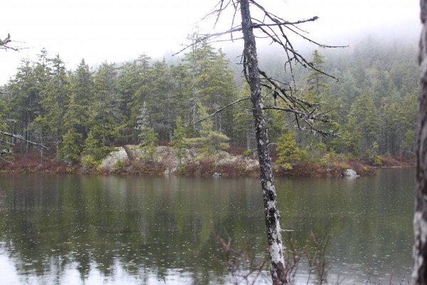 The Borestone Summit trail starts on the bank of Sunrise Pond, which is connected to the larger Midday Pond, which is connect to the smaller Sunset Pond.