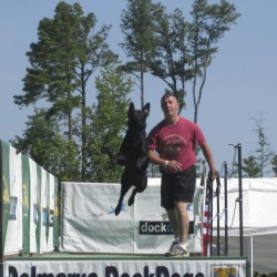 International jumping contest draws canines, owners to Rockland