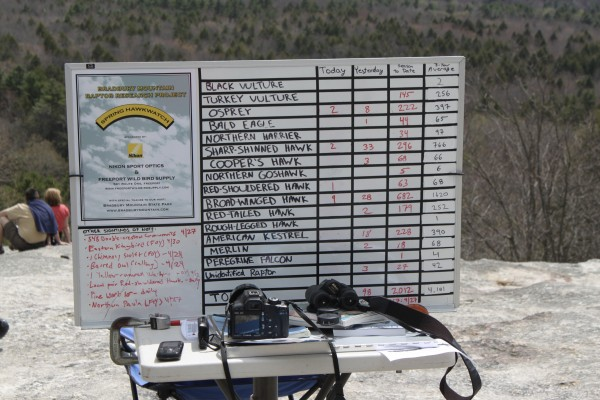 "The 2011 official hawk counter for Bradbury Mountain Spring Hawkwatch, Andy Northrup, displays a tally of the raptors he has counted on a whiteboard on the summit of Bradbury Mountain on Saturday, April 30, during the first ""Feathers Over Freeport"" weekend-long bird-watching festival."