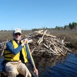 Father's Day Paddle at Hirundo Wildlife Refuge