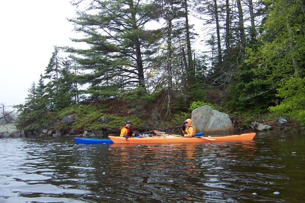 A pair of kayakers looks into the shallows for horseshoe crabs near shore on the Bagaduce River while on a tour with Castine Kayak Adventures.