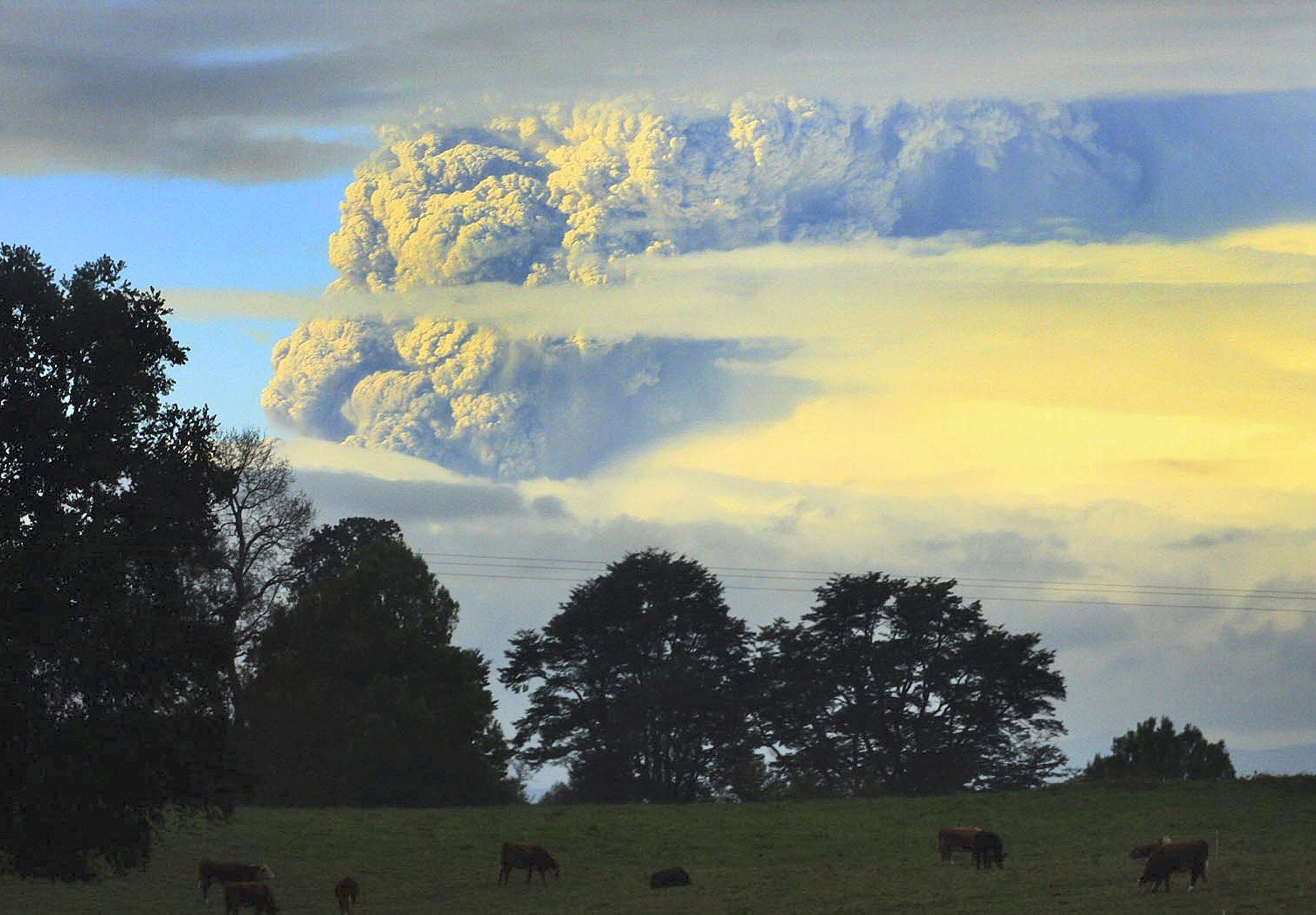 A column of smoke and ashes comes out from the Puyehue volcano, some 1,100 kilometers south of Santiago, Chile, Saturday, June 4, 2011. Authorities have evacuated about 600 people living nearby the volcano. There have been no reports of injuries.