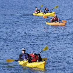 Coastal, inland waters lure kayakers to Mount Desert Island