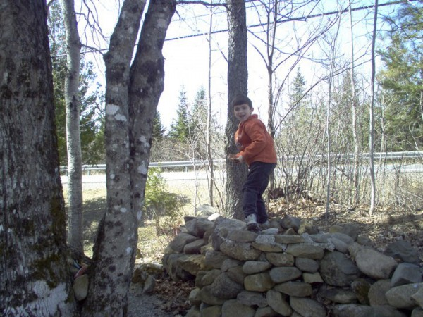 Jesse Ryan plays on a woodpile at his father's home in Amity in an undated photo. The bodies of Jesse, 10, his father, 55-year-old Jeffrey Ryan, and family friend Jason Dehahn, 30, were found last June 23 in Jeffrey Ryan's U.S. Route 1 mobile home in Amity.
