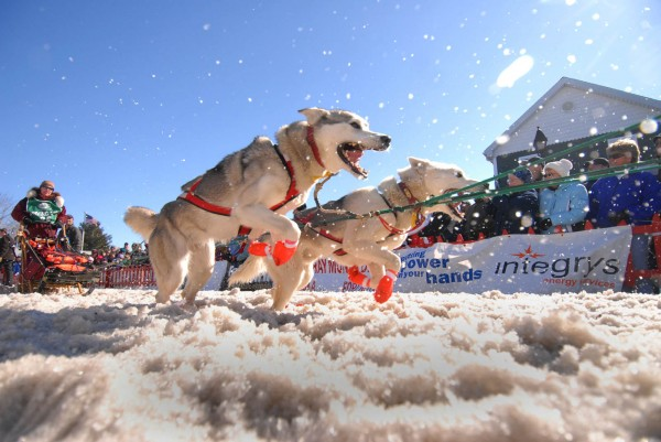 Rhonda O'Hearn of Sandown, New Hampshire is pulled by her over-eager huskies at start the Can-Am Crown 250 in downtown Fort Kent, Maine Saturday, March 6, 2010.