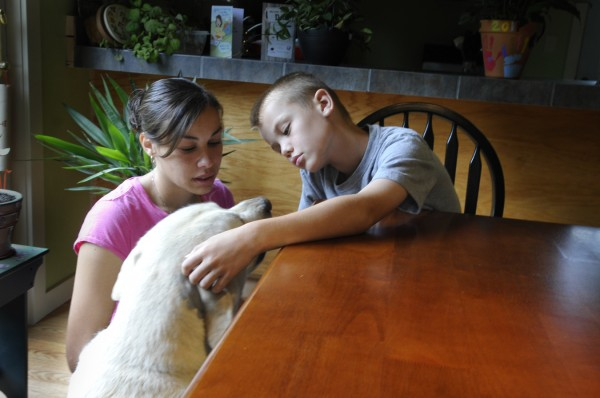 On Tuesday, Jennifer Fall and her son Bryce, 8, cuddle with their yellow Labrador retriever, Duke, as they emotionally recount their finding of Hank, the family's chocolate Labrador retriever, near death at their back door in Palmyra on Monday evening, the victim of an apparent shooting. The Somerset County District Attorney's office is investigating the shooting of the dog.
