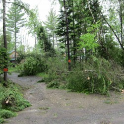 Downed trees are visible near a home in Caribou on Thursday, June 9. A severe storm moved through the state on June 8 and into June 9, bringing dangerous wind, lightning, heavy rain and small hail to some parts of the state. A tornado was confirmed in the area of Little Madawaska Lake in Aroostook County.