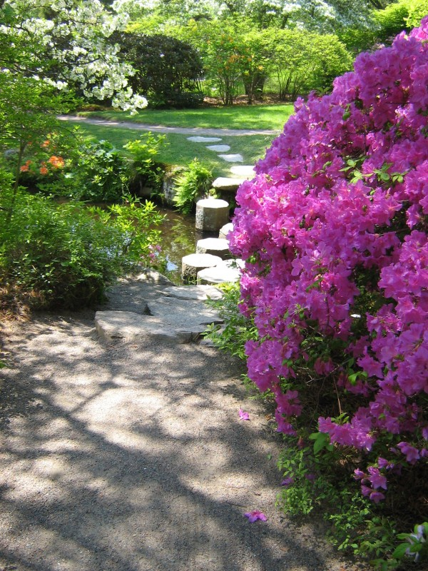 "A circular path at Asticou Azalea Garden in Northeast Harbor brings visitors to this charming ""bridge"" across a narrow stream, one of many visually delightful ""rooms"" in the garden."