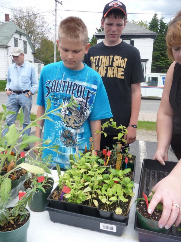 "Isaiah Chevrier, 13, and Tony Theriault, also 13, wait on customers Thursday at the third annual seedlings sale in Eastport. Hundreds of herb, vegetable and flower seedlings were sold to help fund the Eastport Elementary School's Master Gardener program. ""Everything about this project is important to learn,"" pupil Donna Andrews, 14, said. ""This is hands-on learning at its finest,"" Master Gardener volunteer Linda Sisson said."
