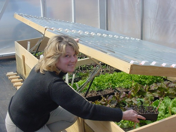 This photo, courtesy of Marjorie Peronto, show Elisabeth Curran, University of Maine Cooperative Extension Master Gardener, inspecting plants in one of the Hancock County Extension greenhouse cold frames.