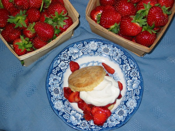 A sweet, buttery biscuit is the key to a strawberry shortcake.