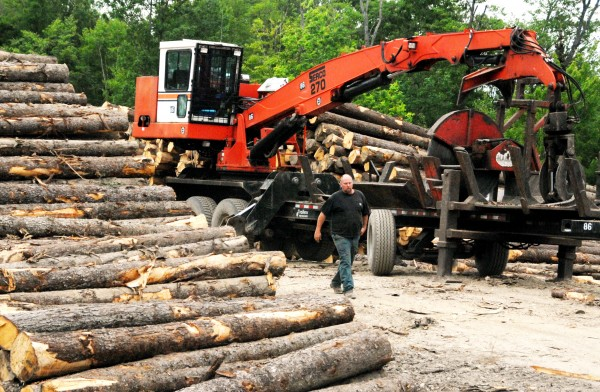 Treeline Inc. woodyard foreman Robert Bailey takes a break from work at the Lincoln business on Friday, June 24, 2011. Bailey had spent much of the day cutting tree trunks with slasher, the large machine behind him.