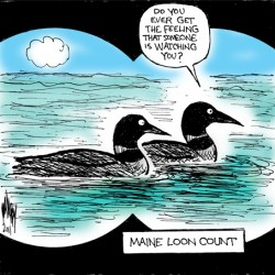 Loon Count