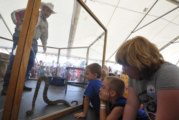 Standing inside a safety enclosure, &quotRattlesnake&quot Dave Richardson of Syracuse, NY shows one of his Western Diamondback rattlesnakes to a throng of captivated chiildren during his West Texas Rattlesnake Show at the Bangor State Fair Saturday afternoon, July 30, 2011. The Bangor State Fair kicked off Friday, July 29 and continues through Sunday, Aug. 7.