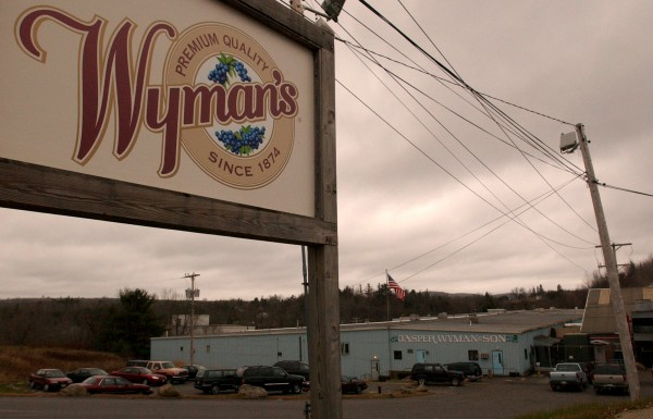 Wyman and Son of Milbridge has been cited for a substantial discharge of blueberry waste into the Great Falls Branch of Schoodic Brook.