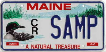 Sample Loon plate