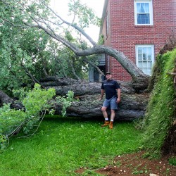 Man crushed by wind-felled tree in Laconia, NH