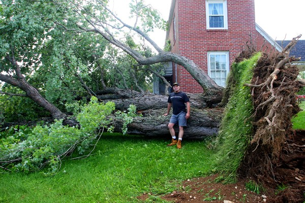 David Corey of Manchester, Conn., stands next to the massive tree that was knocked down by severe weather on July 6 at his mother Marie Corey's home on the Foxcroft Road in Littleton. The tree missed the home by about two feet.