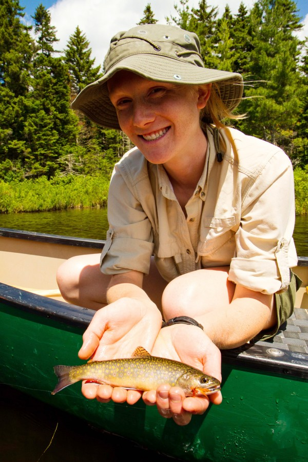 Project coordinator Emily Bastian shows off a brook trout she caught on a remote pond near Rangelely on Thursday during a trip to prescreen ponds that have not been formally surveyed by state fisheries officials. Maine Audubon, Trout Unlimited and the Maine Department of Inland Fisheries and Wildlife are cooperating on a project for volunteer anglers to visit and document what they find at some of the 187 western Maine ponds.
