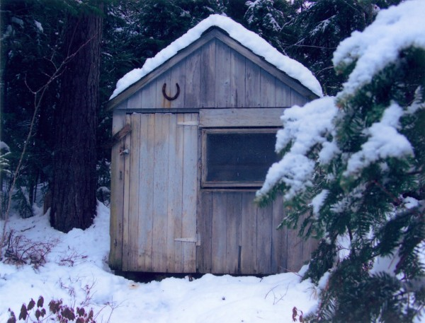 "Karen Wood of Wesley said her family's outhouse originally was a milk shed in Westport, Mass., that was brought to Maine on a flatbed trailer, along iwth a chicken coop and put on the family property as a hunting camp and outhouse. In Westport it stored the day's milk at the farm, it was brought in by the Tripboys to serve as a privy when they came to hunting camp. Sincde the 1970s the chicken coop has had a few additions with one just two years ago. The outhouse is still original, with a fresh coat of paint. The flowers o the door were added by Wood to give it more eye appeal. ""We have seen a few critters comint out of the privy during the night, and the birds have heard many screams because of the spiders that visit durig the day. I keep a can of engine cleaner on the shelf, just in case some larger critter visits while I'm inside,"" Wood said. ""We live out in the woods of Wesley and wouldn't want to be anywhere else. We left the city to enjoy the quiet of the woods and appreciate what nature has to offer."""