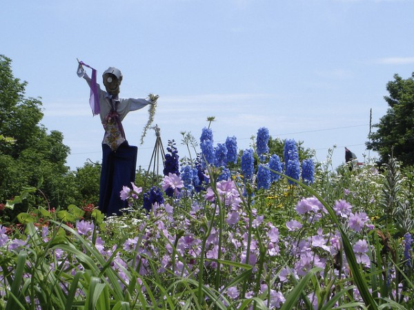 A troop of scarecrows is a highlight at Ocean Glimpse Farm in Northport.