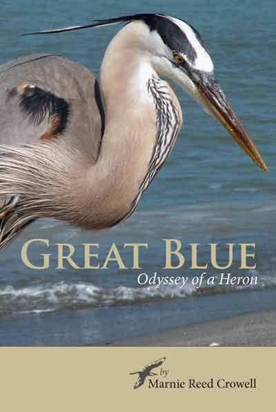 "Great Blue: Odyssey of a Heron"" by Marnie Reed Crowell; Threehalf Press, Sunset, Maine, 2011; 152 pages, trade paperback, $22.95."