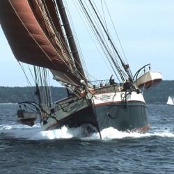 Boothbay doctor wins 45-mile race against schooner — on foot