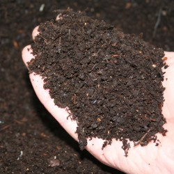 Composting with Worms (Vermiculture)