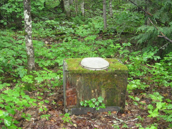 """It is """"au natural"""", a completely unexpected find in the middle of nowhere, says Michelle Anderson of Presque Isle."""