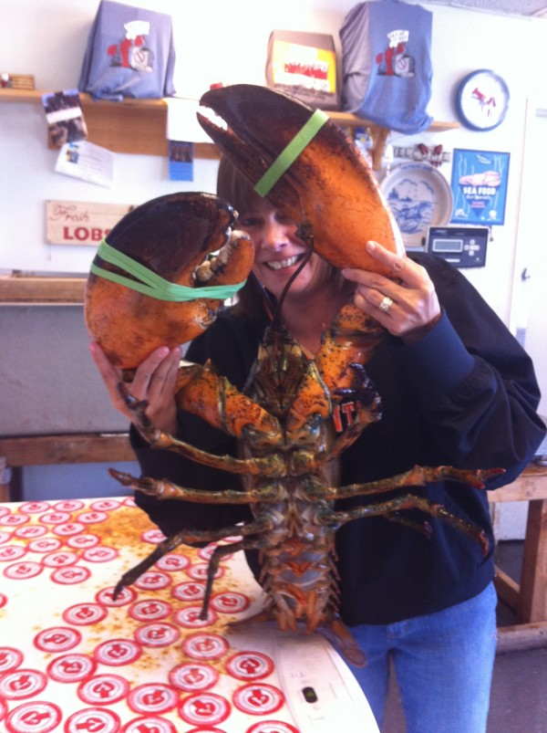 Jennifer Vargas, a bookkeeper at New England Lobster Company in San Francisco, saved the massive &quotLeroy the Lobster&quot from death by donating him to the New York Aquarium. Leroy hails from the waters around New Brunswick's Deer Island.