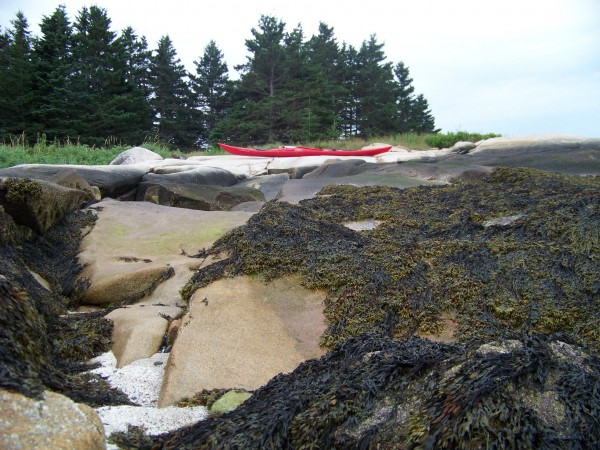 Levi Bridges' touring kayak safely stored above the high-tide line on John Island. The dramatic increase in tidal water levels on Maine's coast help a viewer imagine the reality of potential sea level rise over the next century.