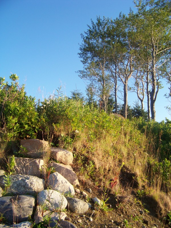 A small stone stairway built into John Island (pictured above) helps prevent erosion.