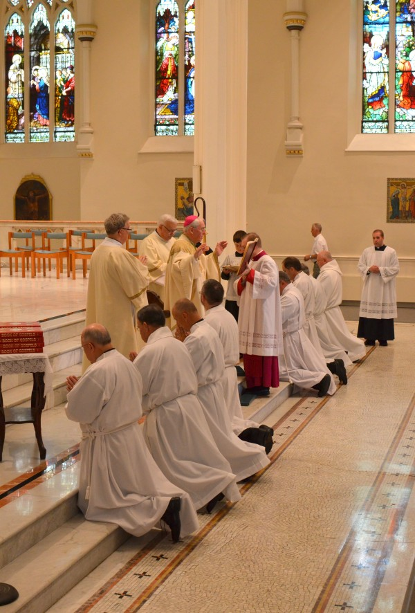 A group of eight men were ordained as permanent deacons at the Cathedral of the Immaculate Conception on Saturday, Aug. 27. The role of ordained deacons is to assist priests in preaching, celebrating the sacraments of baptism and marriage, and other duties determined by the pastor or bishop.