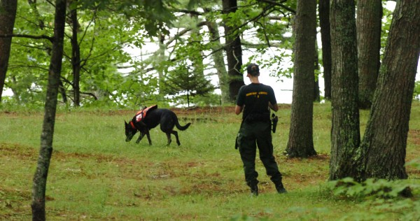 Warden Michelle Merrifield and her K-9, Duchess, search the trails Thursday morning, August 4, 2011, on the grounds of Avalon Village, located on the bank of the Penobscot River in Hampden. They were searching for an elderly  Hampden woman who was reported missing Wednesday night by relatives.  Department of Inland Fisheries and Wildlife Warden Sgt. Ralph Hosford said in addition to two K-9s and their handlers, they were conducting a normal search, with wardens using mapping and GPS to cover the surrounding area. Searchers from the Department of Marine Resources were expected on the river in the afternoon. Hosford said if the rainstorms ended, they hoped to have an aircraft join the search.