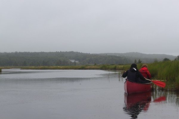 "High school students participating in the ""Islands Through Time"" interdisciplinary course for high school students at College of the Atlantic in Bar Harbor canoe on Northeast Creek on Wednesday, Aug. 10."