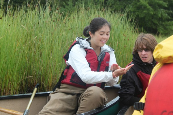 "Arianna Brown, 16, of New York, shows a water spider to Hayden Zahn, 17, of Hamliton, New York, while on a canoeing trip on Northeast Creek on Wednesday, Aug. 10, as part of the College of the Atlantic ""Islands Through Time"" interdisciplinary course for high school students."