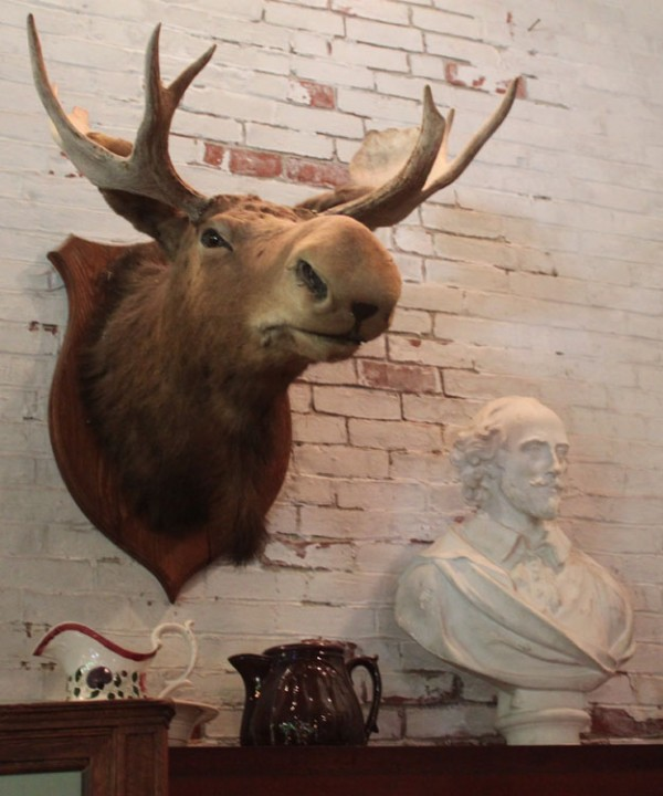 A taxidermy moose is on display beside a bust of William Shakespeare at the L.C. Bates Museum in Hinckley on Wednesday, Aug. 17, 2011.