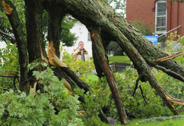A man smokes a cigarette while inspecting a tree that was topled by high winds from hurricane Irene  along Union Street in Bangor on Sunday.