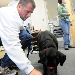 Inmate Andy Pratt of Rockland conditions 4 1/2-month-old Labrador retriever Sadie to ring a bell as fellow Bolduc Correctional Facility inmate Joshua McCarthy (in background) of Freeport looks on. Marie Finnegan (right), a dog trainer and owner of K-9 Solutions, is volunteering at the facility to help the inmates as they train the dogs for placement with families.