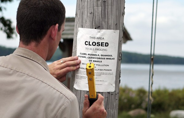 Marine patrol officer Rob Beal posts a &quotclosed to all digging&quot sign at Maquoit Bay in Brunswick, Maine, on Thursday, Aug. 4, 2011. Fisheries officials in Maine have formed a squad, which some clammers are calling a shellfish SWAT team, to look at tens of thousands of acres of clam flats that are closed because of pollution. The aim is to get the areas back open and productive.