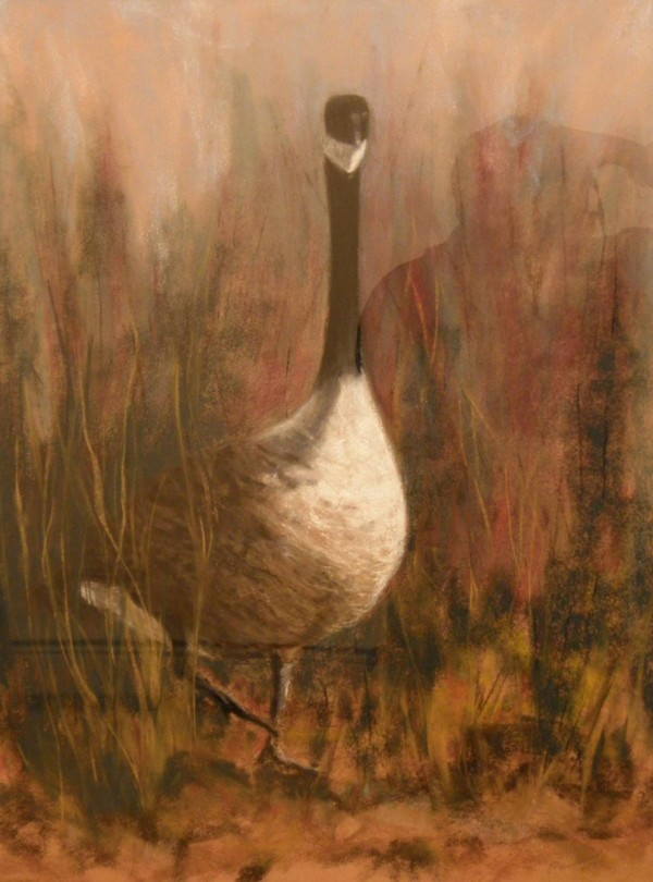 """Canada Goose"" pastel on paper by Cynthia Huntington, owner of the new Tunk Mountain Arts & Crafts in Cherryfield."