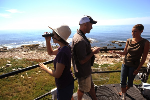College of the Atlantic student Robin Owings (left) uses binoculars to view the southern shore gull colony on Great Duck Island as COA president Darron Collins (center) talks with student Aly Pierik on the observation deck of the Great Duck Island lighthouse on Monday, July 25, 2011. The colony has experinced a high incident rate of eagle attacks on Herring gull chicks.