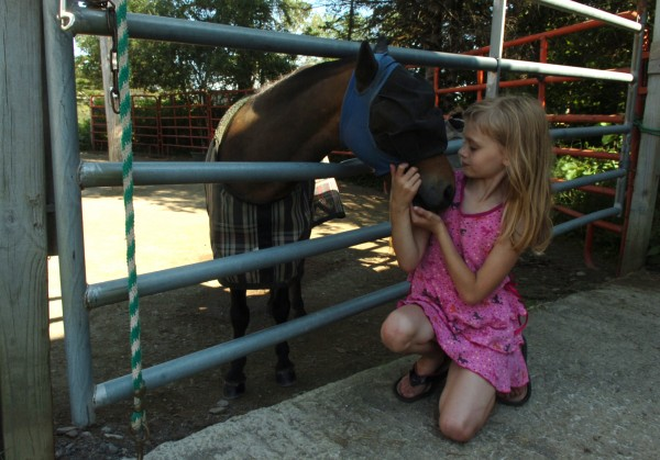 Mercedes Severance, 7, of Carmel, nuzzles one of the miniature horses following her Hooves of Hope riding lesson in Hermon on Monday, August 1, 2011. Severance has a special fondness for the miniature horses and likes to spend time with them before and after her lesson with riding instructor Respah Mitchell.