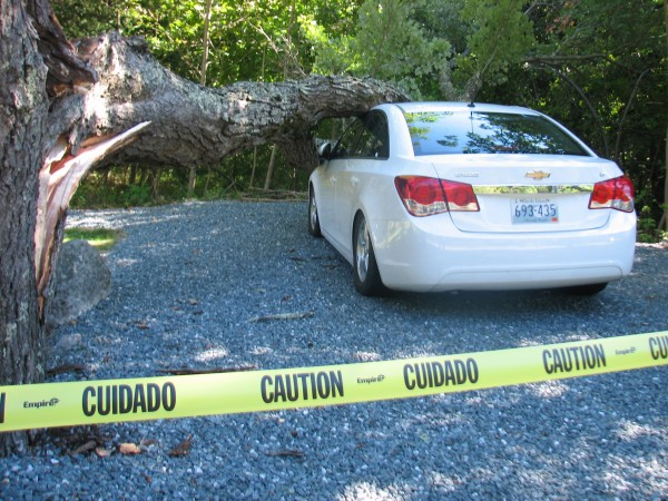 A tree limb rests on a parked car Monday morning on Main Street in Bar Harbor. Despite the high winds generated by Irene, there were few significant incidents that resulted from the tropical storm to report on Mount Desert Island, according to area dispatchers.
